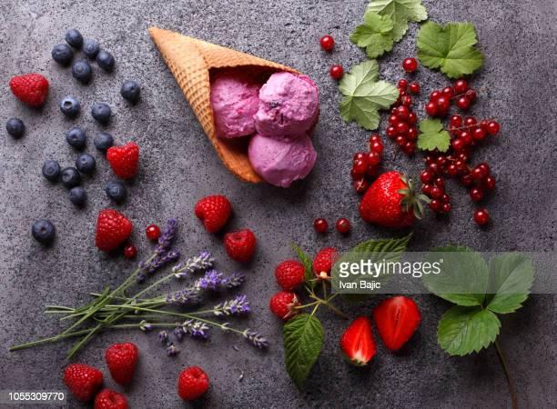 homemade organic fruit ice cream - gelato italiano foto e immagini stock