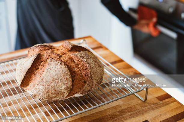 homemade sourdough bread - freshness stock pictures, royalty-free photos & images