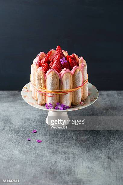 Homemade strawberry cake with ladyfingers