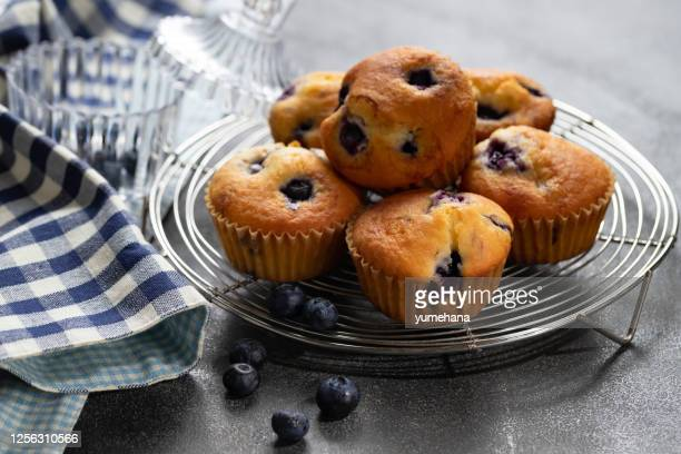 homemade vanilla muffins with blueberries on a dark concrete background - muffin stock pictures, royalty-free photos & images