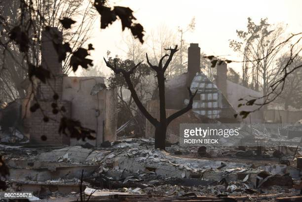 Homes destroyed by wildfires are seen in Santa Rosa California on October 11 2017 The death toll from some of California's worst ever wildfires rose...