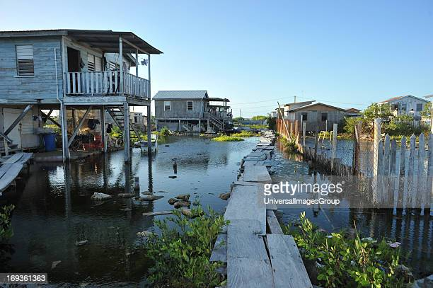 Homes in a swampy area of Ambergris Caye Belize The homes are supported on stilts and boards are used to access them