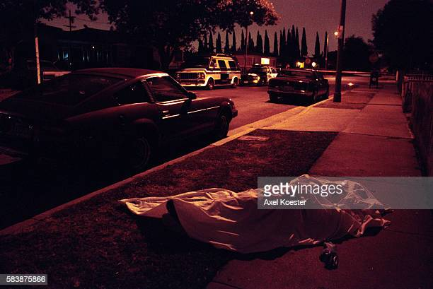LAPD homicide detectives investigate a fatal gang shooting in SouthCentral Los Angeles in 1995