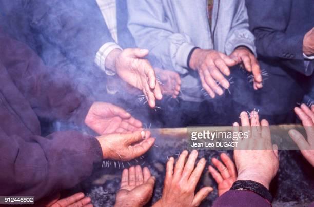 Hommes ages faisant de l'acupuncture des mains dans le Tapgol Park de Seoul Coree du Sud