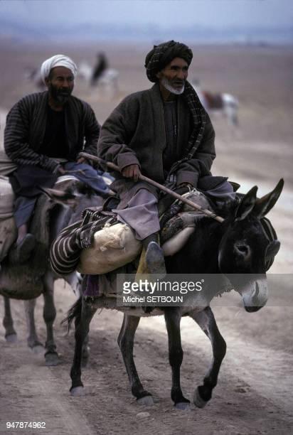 Hommes âgés voyageant à dos d'ânes dans la région de Mazâre Charîf en janvier 1991 Afghanistan