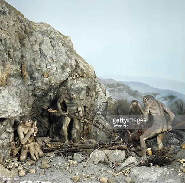 Homo erectus Java Peking und Heidelbergmensch