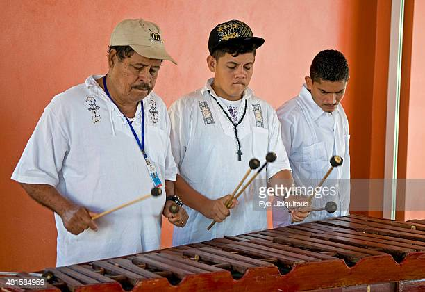 Honduras Roatan Island Mahogany Bay Local musicians playing traditional music on the marimba
