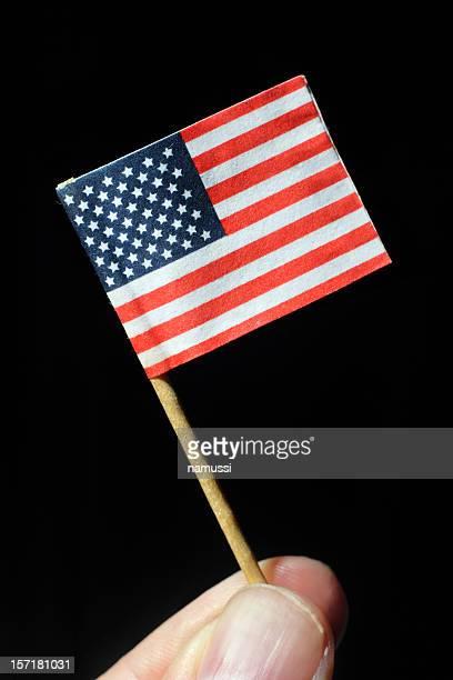 Honey I shrunk the United States