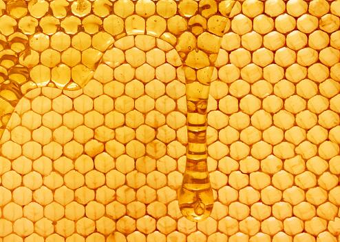 Honey - gettyimageskorea