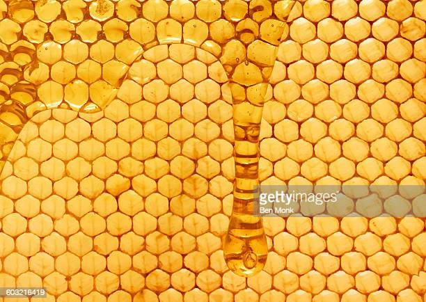 honey - natural pattern stock pictures, royalty-free photos & images