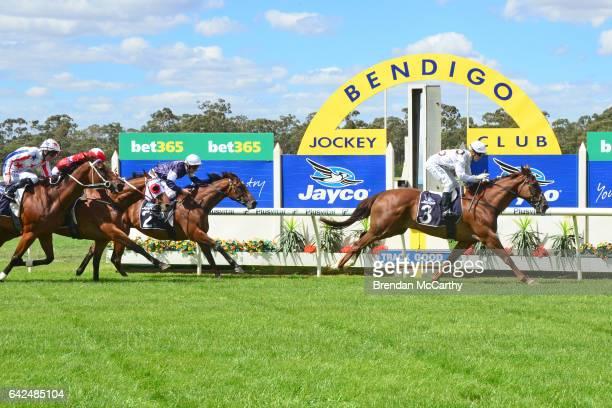 Honey Steel's Gold ridden by Cory Parish wins Phil Palma Bendigo Ford Marong Cup at Bendigo Racecourse on February 18 2017 in Bendigo Australia