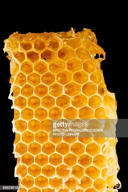 Honeycomb, close up