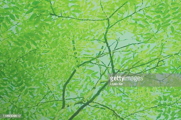honeycomb effects of leaves - liyao xie stock pictures, royalty-free photos & images