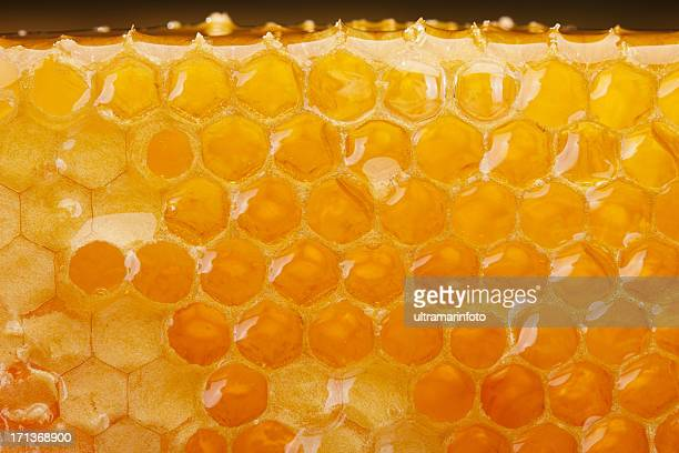 honeycomb slice - honeycomb stock pictures, royalty-free photos & images
