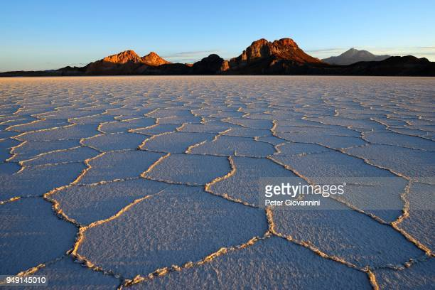 Honeycomb structure on the salt lake at sunrise, Salar de Uyuni, Uyuni, Potosi, Bolivia