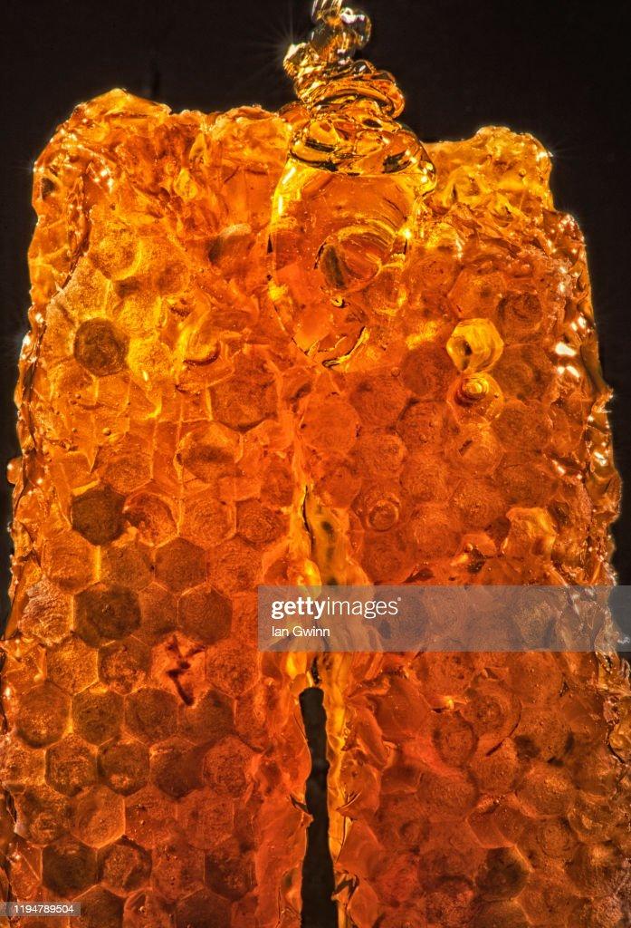Honeycomb_2 : Stock Photo