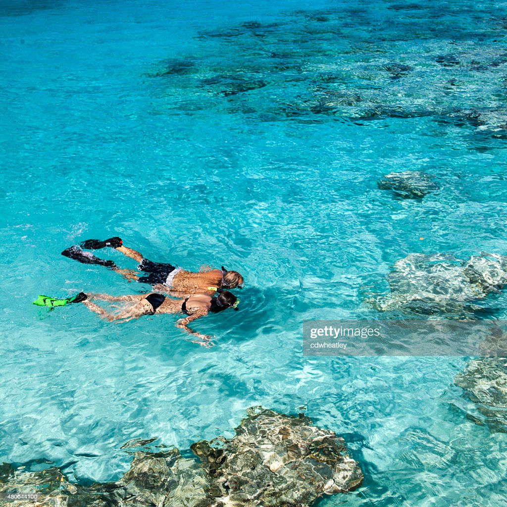 honeymoon couple holding hands while snorkeling in the Caribbean : Stock Photo