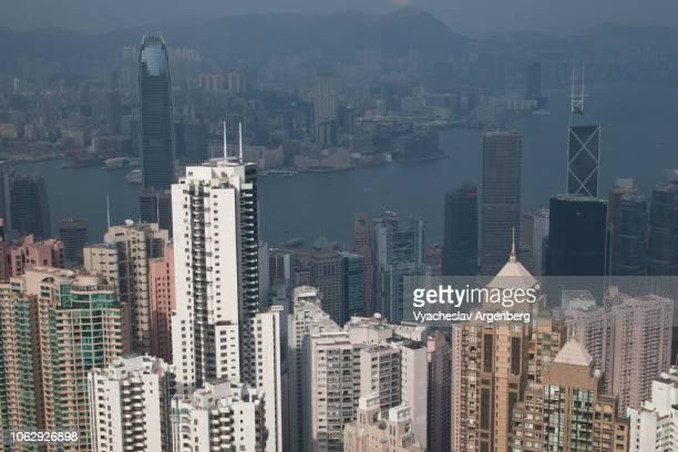 hong kong majestic panorama of skyscrapers, a culture of high-rise, high-density development - argenberg stock-fotos und bilder