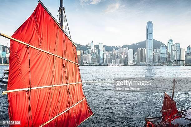 Hong Kong Victoria Harbour Dukling