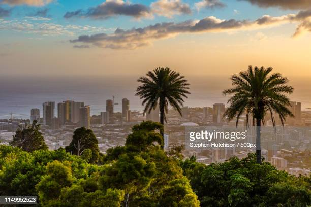 honolulu sunset - pacific islands stock pictures, royalty-free photos & images