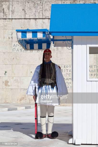 ヘレニック議会の名誉警備隊 - ギリシャ国会議事堂 ストックフォトと画像