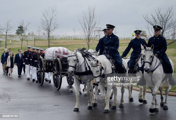 Honor guard use a caisson transfer the remains of Marine Pvt Harry K Tye of Orinoco Kentucky to his gave site He was buried with full military honors...