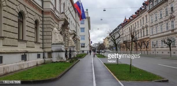 大統領官邸前で顔のマスクを持つ名誉警備員 - スロベニア国旗 ストックフォトと画像