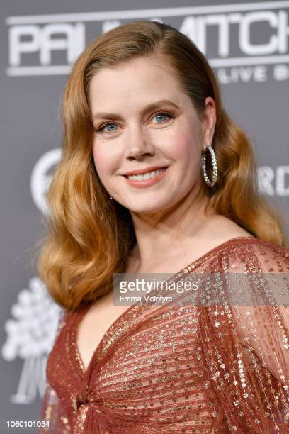 Honoree Amy Adams attends the 2018 Baby2Baby Gala Presented by Paul Mitchell at 3LABS on November 10 2018 in Culver City California