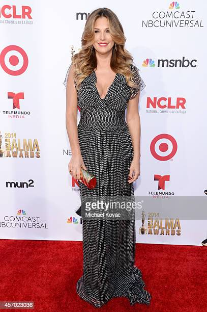 Honoree Daisy Fuentes attends the 2014 NCLR ALMA Awards at the Pasadena Civic Auditorium on October 10 2014 in Pasadena California