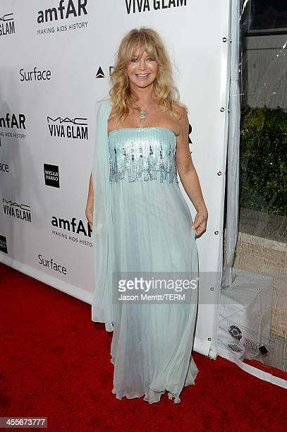 Honoree Goldie Hawn attends the 2013 amfAR Inspiration Gala Los Angeles at Milk Studios on December 12, 2013 in Los Angeles, California.