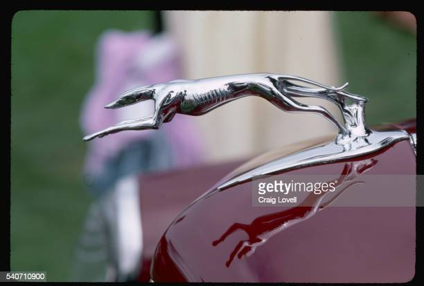 hood ornament on classic car - hood ornament stock pictures, royalty-free photos & images