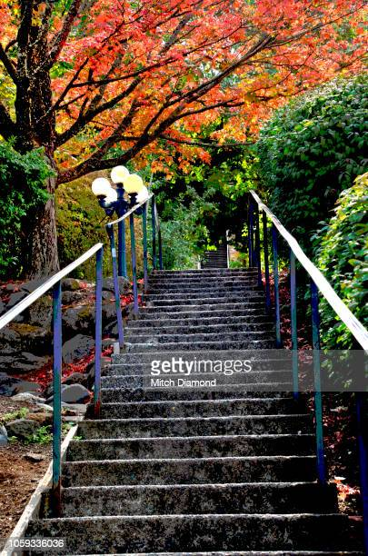 hood river staircase - hood river stock pictures, royalty-free photos & images