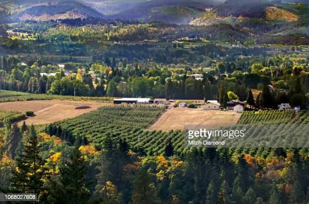 hood river valley autumn - hood river stock pictures, royalty-free photos & images