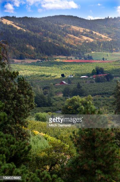 hood river valley autumn - hood river valley stock pictures, royalty-free photos & images