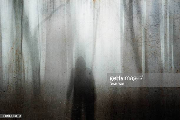 a hooded figure looking out into a spooky forest on a foggy winters day. with a grainy muted blurred abstract edit. - spooky stock pictures, royalty-free photos & images