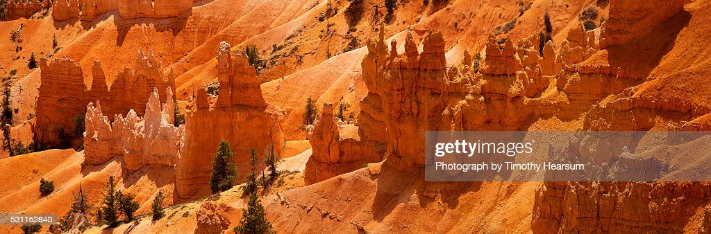 Hoodoo rock formations on a hillside in Bryce Canyon : Stock Photo