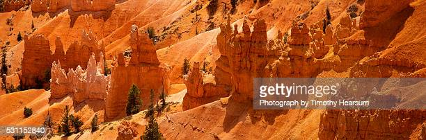 hoodoo rock formations on a hillside in bryce canyon - timothy hearsum stock pictures, royalty-free photos & images