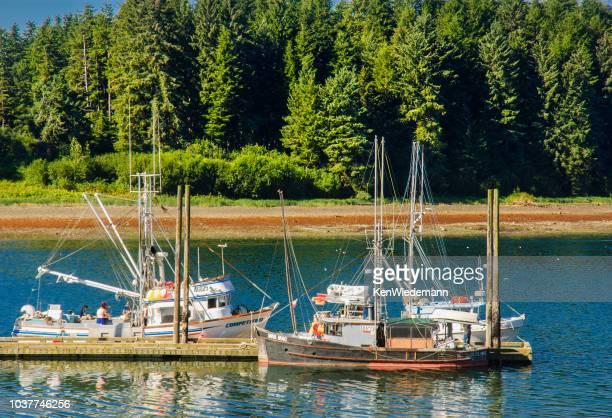 barcos de pesca de hoonah - isla de chichagof fotografías e imágenes de stock