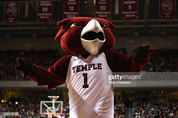Hooter the mascot for the Temple Owls performs against the Villanova Wildcats at the Liacouras Center on December 10 2011 in Philadelphia Pennsylvania