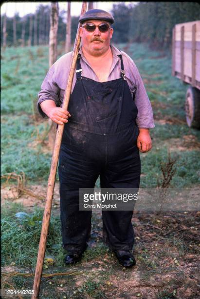 Hop picker stands with a pole in a hops field on a farm near Cranbrook in Kent, United Kingdom, September 1970.