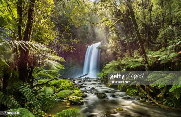 Hopetoun Falls, Hopetoun Falls, Australia