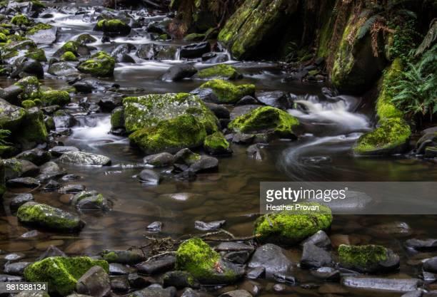 hopetoun falls stream - heather brooke ストックフォトと画像