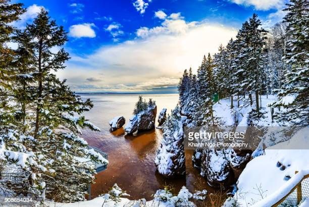 hopewell rocks in new brunswick - khanh ngo stock pictures, royalty-free photos & images