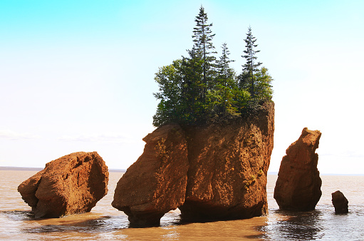 Hopewell Rocks in the Bay of Fundy, New Brunswick, Canada in the muddy water at high tide 803833932