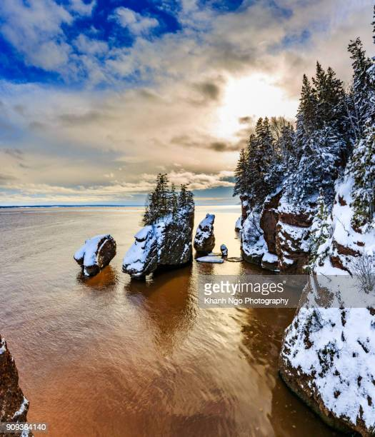 hopewell rocks - khanh ngo stock pictures, royalty-free photos & images
