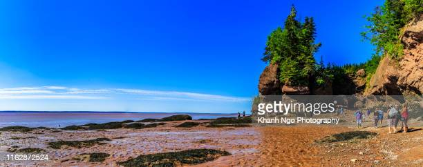 hopewell rocks site in new brunswick, canada - national landmark stock pictures, royalty-free photos & images