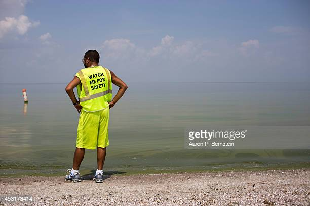 Horacio Romero of Toledo Ohio looks at algae in Lake Erie at Maumee Bay State Park August 4 2014 in Oregon Ohio Toledo Ohio area residents were once...