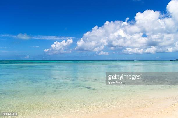 horizon over the clear waters in tropics - 自然美 ストックフォトと画像