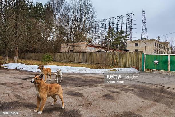 Horizon radar station Arc (Duga). Chernobyl zone