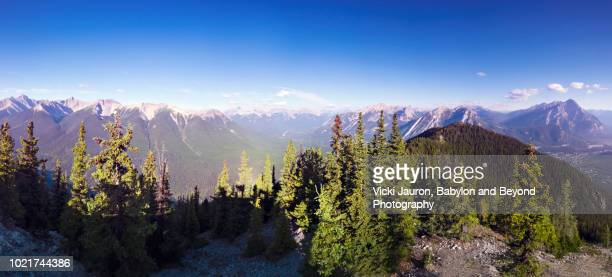 horizontal panorama of mountain peaks and trees from sulphur mountain, banff national park - sulphur mountain stock pictures, royalty-free photos & images